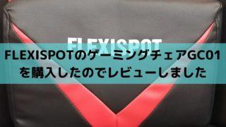 FLEXISPOTのゲーミングチェアGC01を購入したのでレビュー